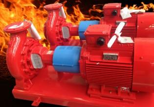 Sprinkler pompmotor van Regal Beloit