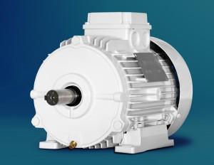 Merkes IE4 Motor