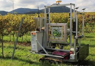 Outdoor robot voor in de druiventeelt